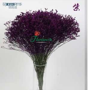 紫色水晶草 (0.5KG/扎)