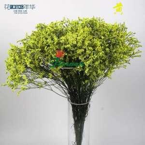 黄色水晶草 (0.5KG/扎)