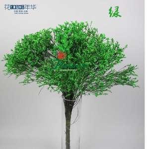 绿色水晶草 (0.5KG/扎)