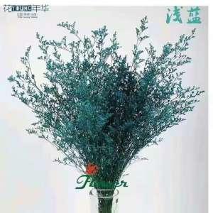 浅蓝情人草 (0.5KG/扎)