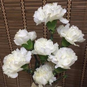 白康 (20枝/扎)