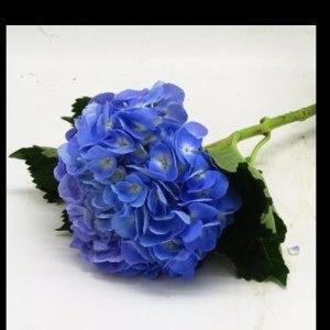 绣球深蓝 (1枝/扎)