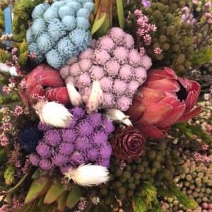 南非公主珊瑚花束
