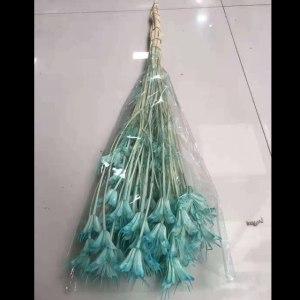 永生八角花--蓝色