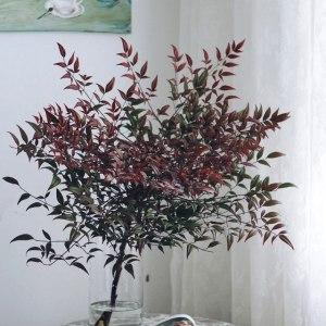 南天竺红色 (若干支/扎)